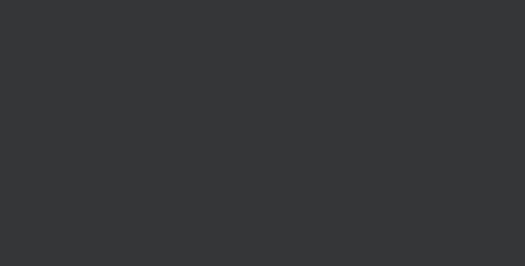 logo-client-paladone